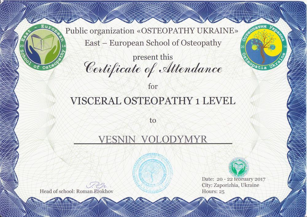 Сертификат Висцеральная остеопатия 1 уровень