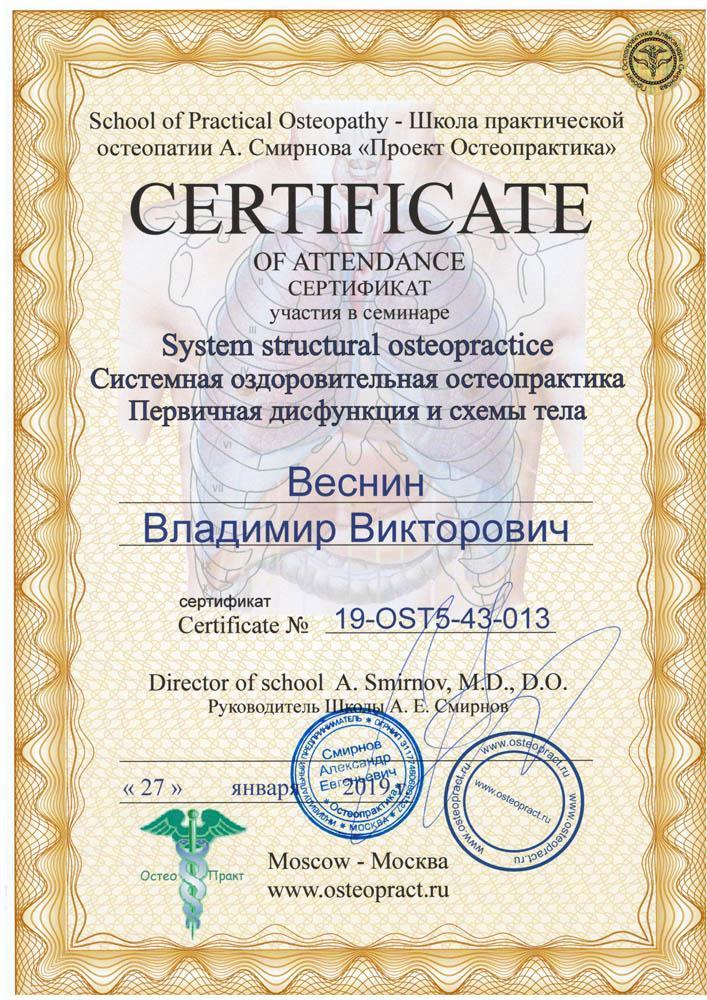 Сертификат Системная оздоровительная остеопрактика, первичная дисфункция и схемы тела