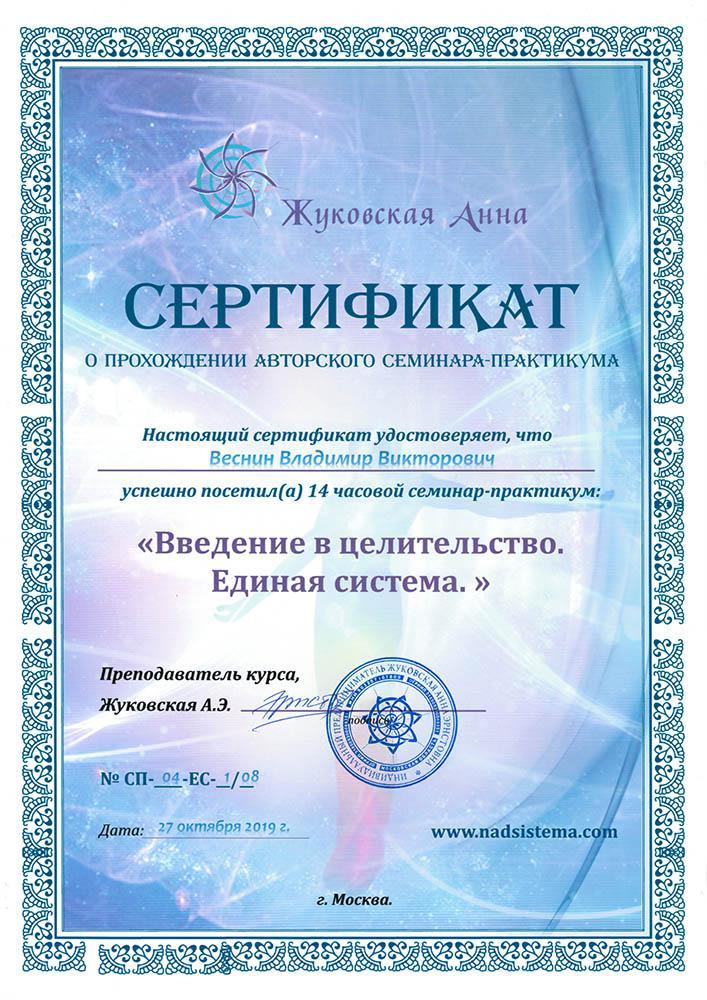 Сертификат Введение в целительство - единая система