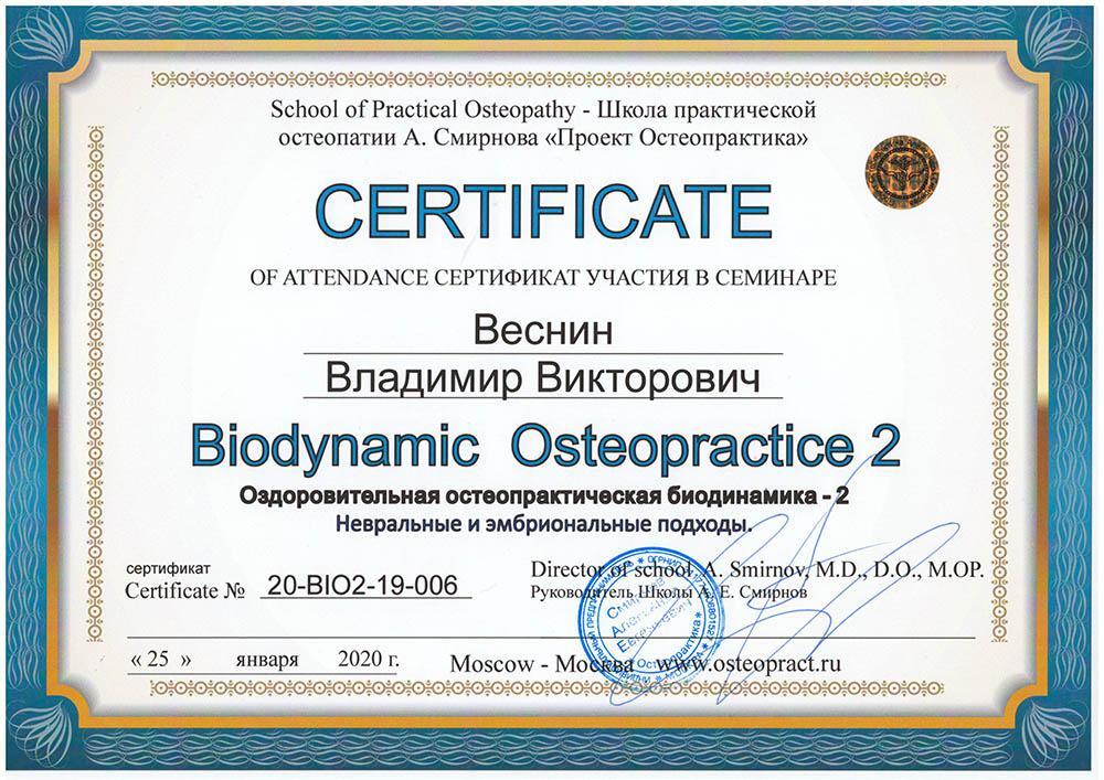 Сертификат Оздоровительная остеопрактическая биодинамика - 2 (невральные и эмбриональные подходы)