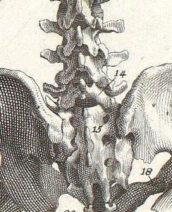 Структурна остеопатія