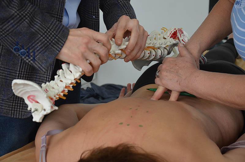 Структурная остеопатия