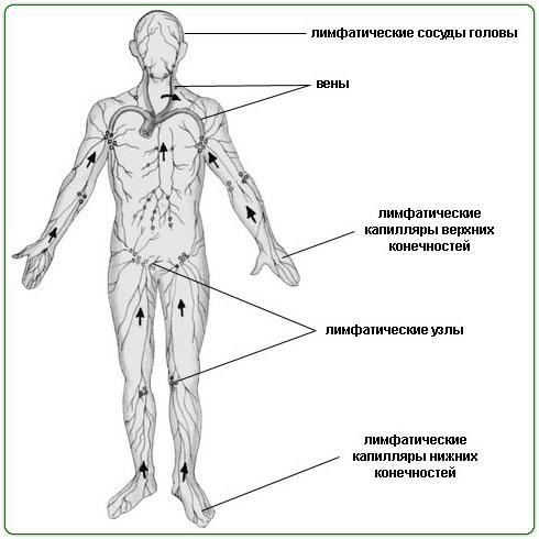 Испанский жидкостный массаж тела