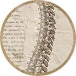 Структуральная остеопатия 2