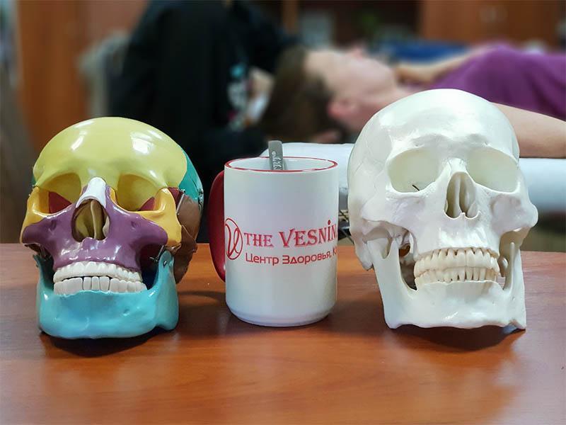 Остеопатія. Коротко про головне